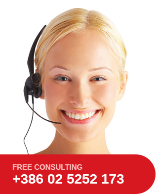 Roto Group free consulting